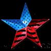 American-Star-300x300